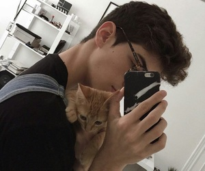 boy, cat, and tumblr image