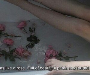 aesthetic, quotes, and alternative image