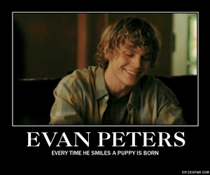 puppies, smile, and evan peters image