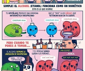 alcohol, anatomia, and dreams image