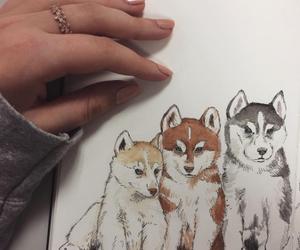 art, dogs, and husky image