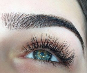 eyes, eyebrows, and eye image