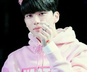 flower, pink, and bap image