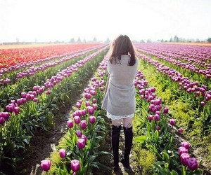 japan, japanese girl, and spring image