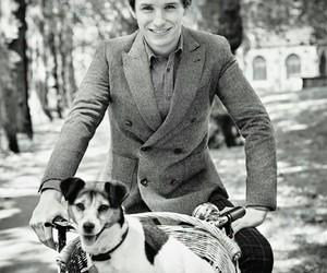 eddie redmayne and dog image