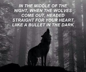 wolves, Lyrics, and one direction image