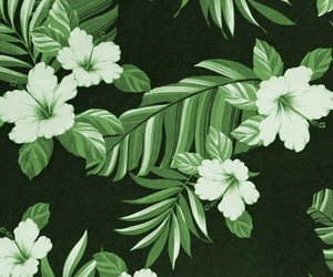 flowers, green, and wallpaper image