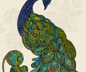art, peacock, and illustration image