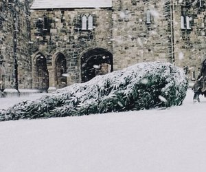 harry potter, hogwarts, and winter image