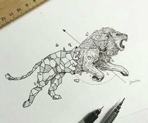 lion, art, and drawing image