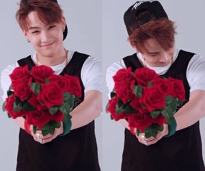 flowers, Hot, and JB image