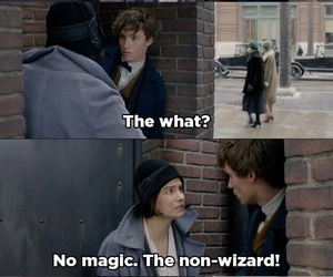 fantastic beasts, newt scamander, and muggles image