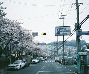 asia, korea, and south korea image