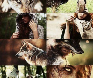 wolf and wild image