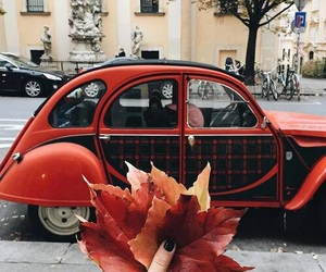 leaves, autumn, and red image