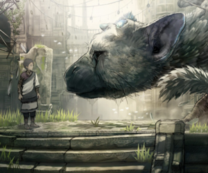 boy, sony, and trico image