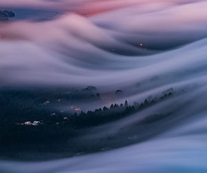 beautiful, fog, and photograph image