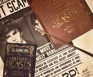 book, fantastic beasts, and harry potter image