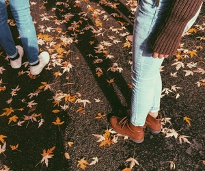 cozy, fall, and leaves image
