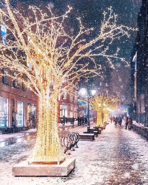 christmas, winter, and beautiful image