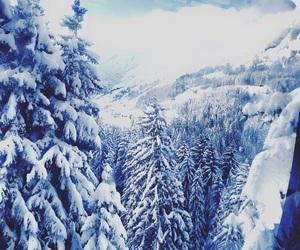 christmas, landscape, and christmas tree image