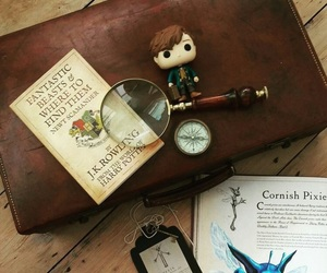fantastic beasts, newt scamander, and and where to find them image