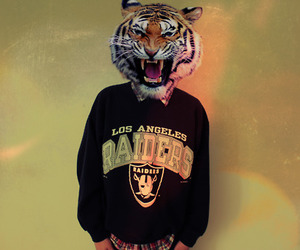 tiger and swag image