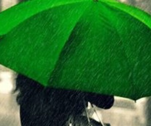 color, rain, and green image