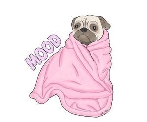mood, pastel, and pug image