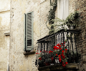 balcony, flowers, and red image
