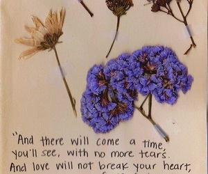 flowers, quotes, and text image