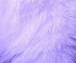 fur, tumblr, and white image