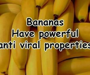 bananas, yum, and healthy living image