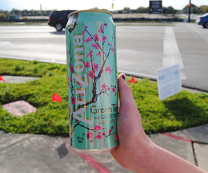 arizona, drink, and green tea image