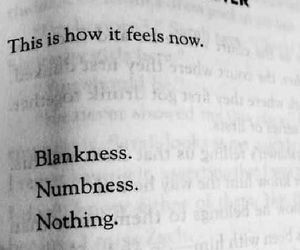 quotes, nothing, and sad image