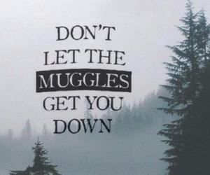 harry potter, muggles, and wallpaper image