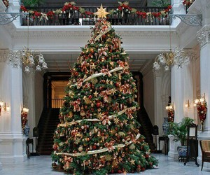christmas, christmas tree, and tree image
