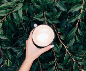 nature, coffe, and hand image