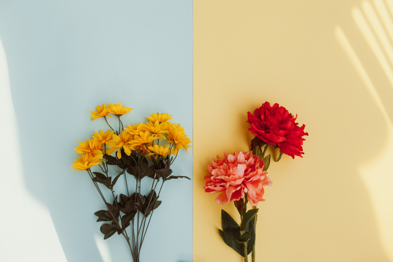 Image In Flower Collection By Zoe On We Heart It