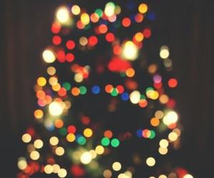 boy, christmas tree, and lights image