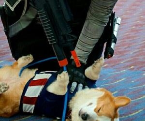 cosplay, funny, and Marvel image