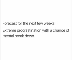 exams, finals, and procrastinate image