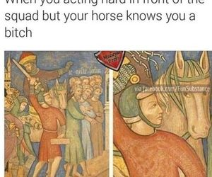 funny, horse, and humor image