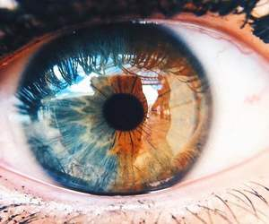 eyes, blue, and eye image