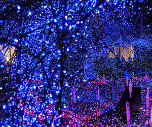 light, blue, and christmas image
