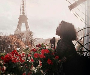 balcony, paris, and red roses image