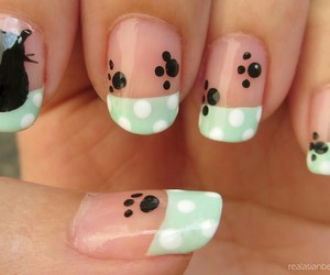 cat, nails, and paws image