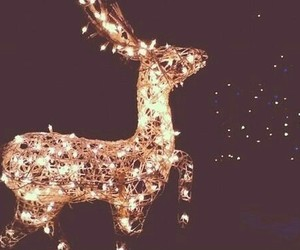 aesthetic, lights, and reindeer image