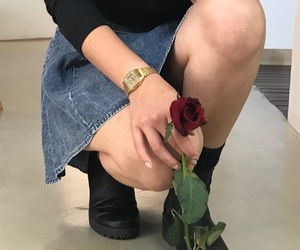 rose, grunge, and flowers image