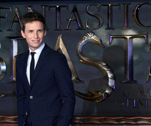 eddie redmayne, harry potter, and newt image
